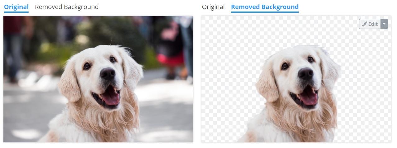 Remove Image Background ukazka odstraneni pozadi