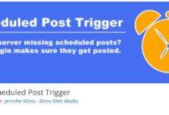 Scheduled Post Trigger